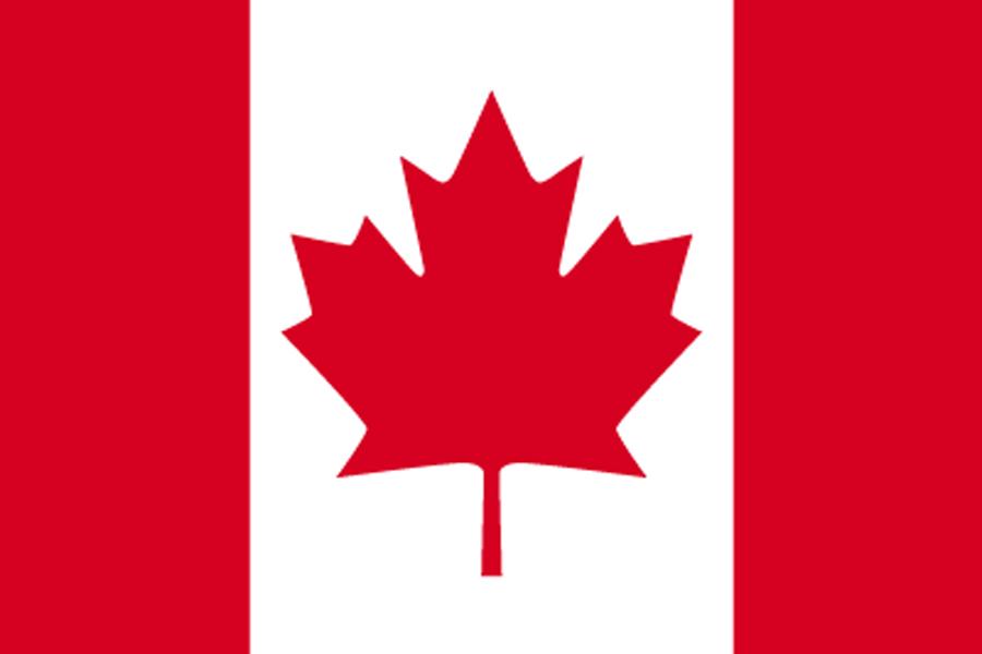 カナダビザ 規定